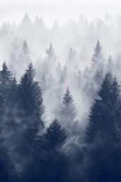https://46ascending.files.wordpress.com/2015/10/cold-mountain.jpg